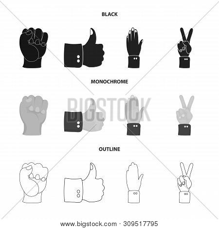 Vector Illustration Of Animated And Thumb Logo. Set Of Animated And Gesture Vector Icon For Stock.