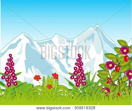 Green Glade With Flower And Snow Mountains
