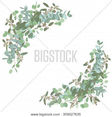Set Of Wedding Bouquets. Elegant Floral, Greenery, Semicircle Collection. Bouquet Of Eucalyptus Spir