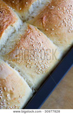 Home Made Bread Buns