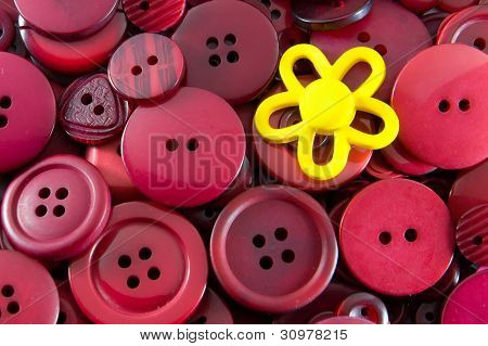 Red Buttons - Yellow Flower