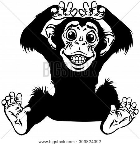 Cartoon Chimp Ape Or Chimpanzee Monkey Smiling Cheerful With A Big Smile On Face Showing Teeth. Posi