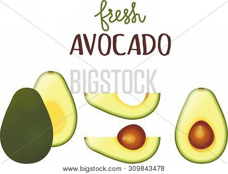 Avocado Fresh Fruit