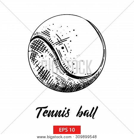 Vector Engraved Style Illustration For Posters, Decoration And Print. Hand Drawn Sketch Of Tennis Ba