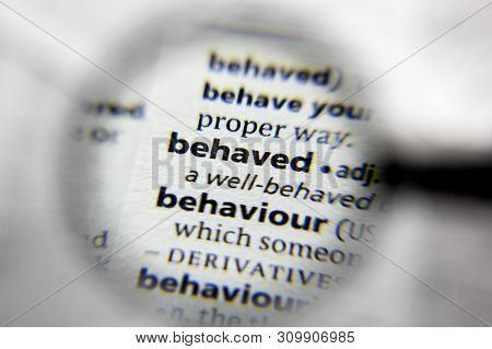 The Word Or Phrase Behaved In A Dictionary