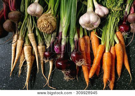 Variety Of Root Garden Vegetables Carrot, Garlic, Purple Onion, Beetroot, Parsnip And Celery With To