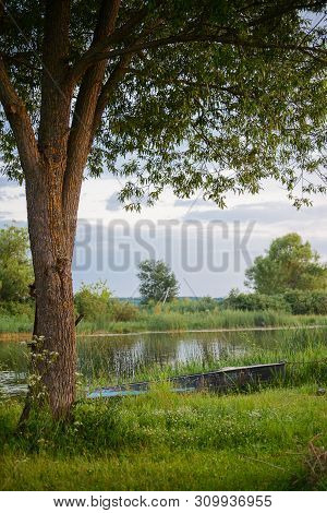 Summer Landscape With The Boat And A Tree On The River Bank