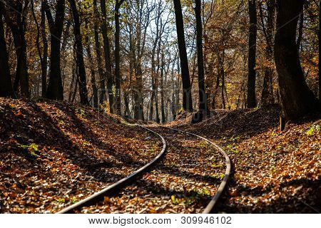 Autumn Scene With A Train Track And A Forest In The Background