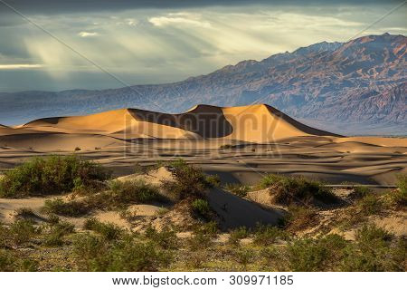 Sand dunes in a desert landscape in Death Valley California.  The vast barren land is dry and arid due to droughts result of global warming and climate change. poster