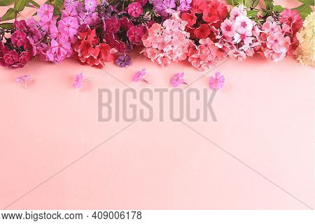 Abstract Flower Arrangement, Still Life, Spring Banner, Phlox Frame With Place For Text On Bright Ba