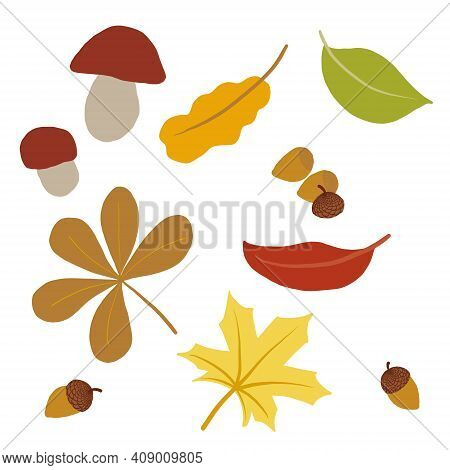 Collection Of Fall Season Symbols. Set Of Autumn Related Isolated Objects. Mild Colors. Leaves, Acor