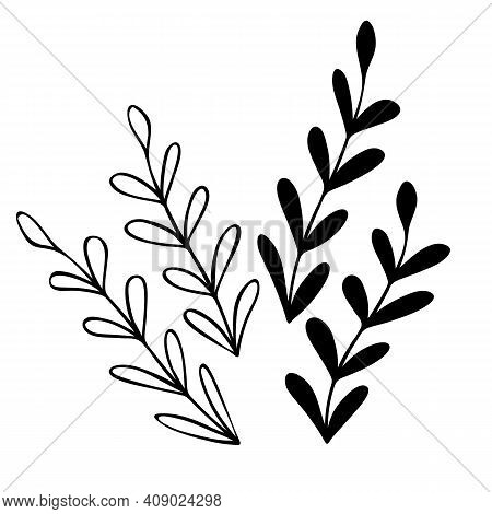 Hand Drawn Abstract Floral Sprig Silhouette. Black And White Outline Vector Illustration. Decorative