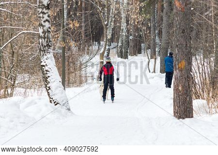 Man Goes Skiing In The Winter In The Forest. Selective Focus