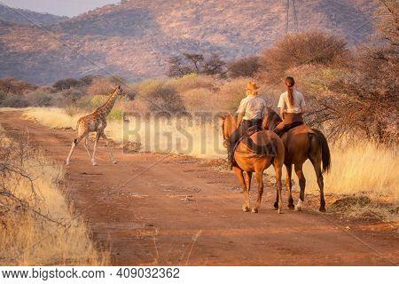 Two Female Riders Watch Giraffe Crossing Track