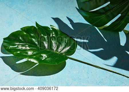 Background Texture In Blue With Monstera Leaf And Hard Shadow From Monstera