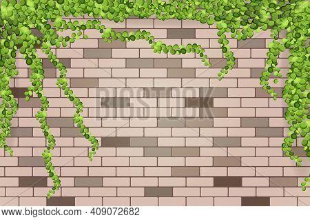 Abstract Background. Brick Old Wall Along Cor = Torah Creeps Green Background.