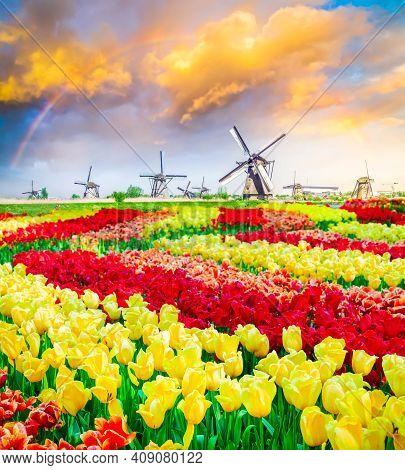 Row Of Traditional Dutch Windmills At Kinderdijk At Summer Day Underrainbow, Netherland