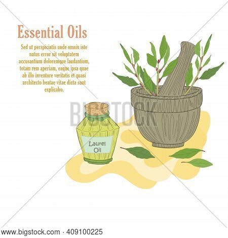 Hand Drawn Mortar With Laurel Herbal And Vial With Laurel Essential Oil. Isolated Composition In Old