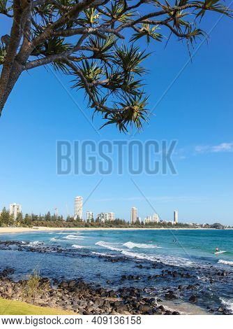 Surfers Paradise Framed Through A Pandanas Tree From Burleigh Heads On The Queensland Coast. This Ar