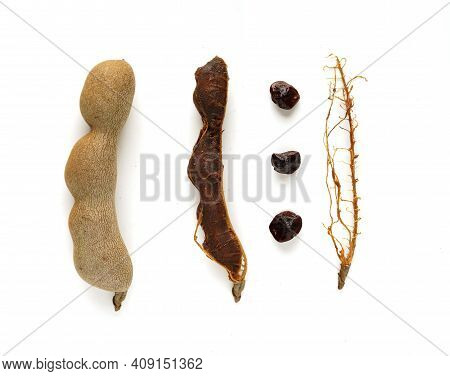 Tamarind Tree Produces Brown, Pod-like Fruits That Contain A Sweet, Tangy Pulp