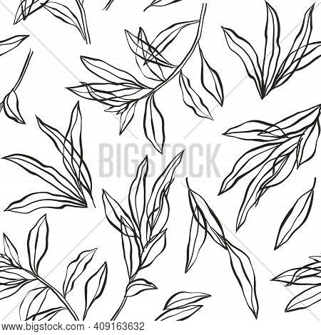 Vector Vintage Botanical Seamless Pattern With Eucalyptus, Laurel. Hand Drawn Ink Silhouette With Pl