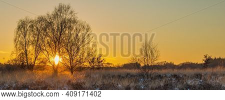 Sunset During Winter With Snow In Naitonal Park Veluwe Netherlands