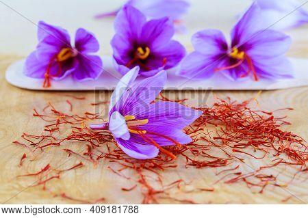 Saffron Flowers On Saffron Stigmas Scattered On A Wooden Surface. Crocus Saffron Flowers.