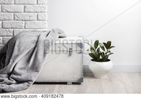 White Wooden Box With Gray Soft Fleece Blanket On It And Young Rubber Plant In White Flower Pot. Whi