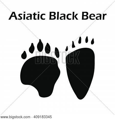 Asiatic Black Bear Footprint. Black Silhouette Design. Vector Illustration.