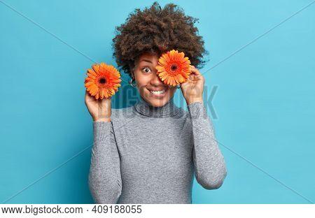 Positive Dark Skinned Woman Holds Orange Gerberas Covers Eye Poses With Favorite Flowers Dressed In