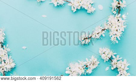 Sakura Background With Flower Blossom And April Floral Nature On Blue. Beautiful Scene With Blooming