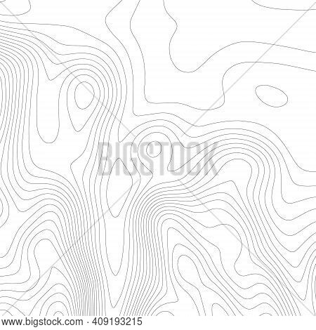 Contour Vector. Topographic Map On White Background. Topo Map Elevation Lines. Contour Vector Abstra