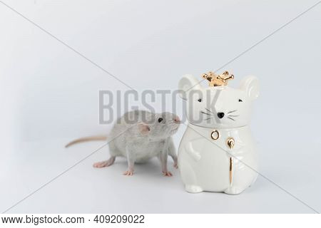 A Decorative Grey Cute Rat Stands Next To A Porcelain Figurine In The Shape Of A Rat Wearing A Royal