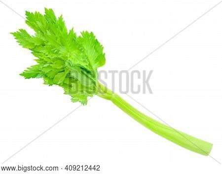 Fresh Celery Isolated On White Background. Stalk Of Celery With Leaves. Top View