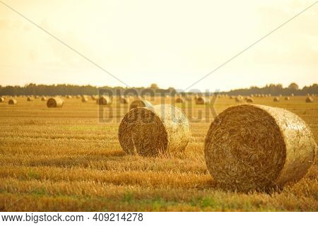 Landscape View Of Agricultural Parcels Of Different Crops. Hay Bale Fields And Farmlands Of Lithuani