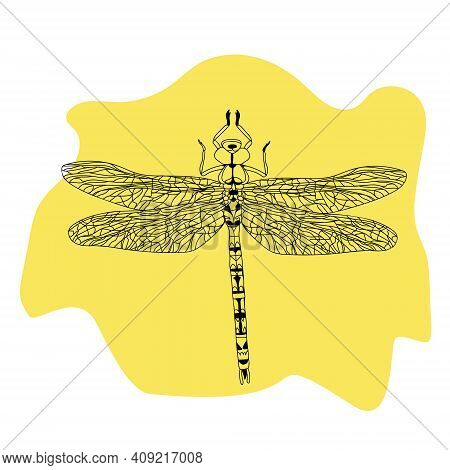 Hand Drawn Illustration With Black Dragonfly. Dragonfly Tattoo Sketch. Coloring Books. Hand-drawn Ve
