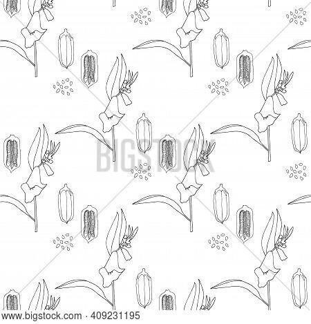 Sesame Seamless Pattern Monochrome Art Design Stock Vector Illustration For Web, For Print, For Prod