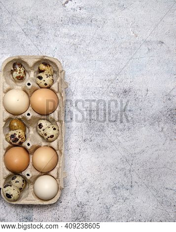 Chicken And Quail Eggs In The Egg Tray. Free Space