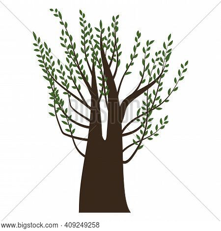 A Tree With Green Leaves. Thick Tree. A Plant With A Brown Trunk. Nature Illustration. Stock Image.