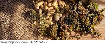 Cbd Pills. Group Of Cannabidiol Capsules And Dried Medical Hemp.