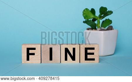 On A Light Blue Background On Wooden Cubes Near A Plant In A Pot It Says Fine