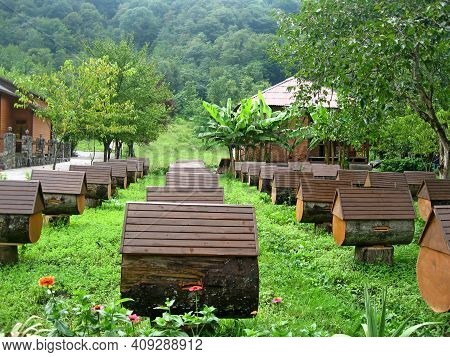 Apiary In Abkhazia. Hives Of Bees, Apiculture. Close-up View Of Wooden Beehive Units Of Apiary Stand