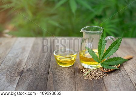 Cbd Hemp Oil In Glass Bottles, Hemp Leaves And Cannabis Seeds. Cannabis Oil Concept By Researchers O