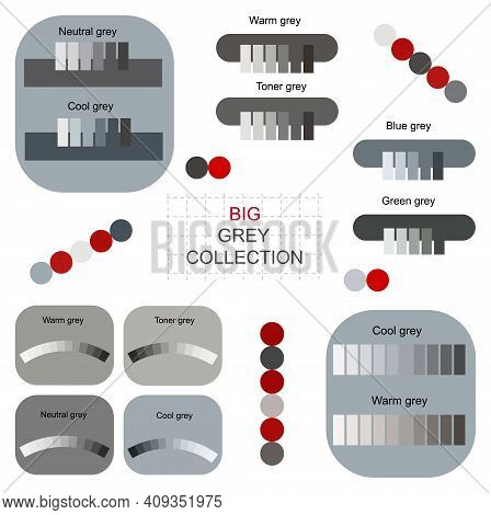 Luxury Grey Tones 2021 Color Palettes Trendy Collection Vector. Conceptual Colour Palettes Gray Smoo