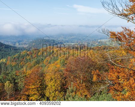 View Of Colorful Vivid Deciduous Beech And Pine Tree Forest And Hills From Viewpoint Called Vyhlidka