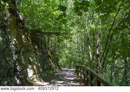 Sentiero Della Valtellina, Sondrio Province, Lombardy, Italy: The Cycleway In The Forest