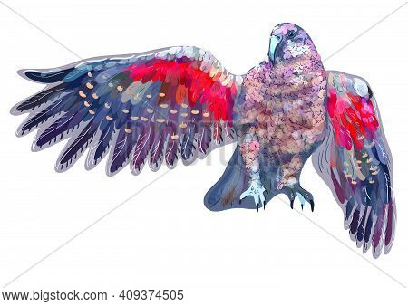 Parrot Kea Isolated On A White Background