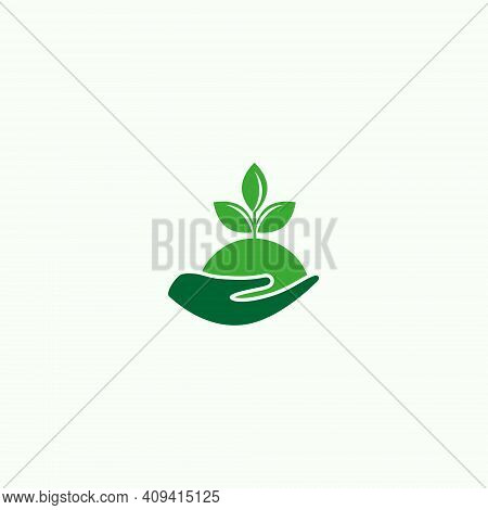 Vector Illustration Of Palms And Green Plants For Plantation Land Icon, Symbol Or Logo. Garden Logo.