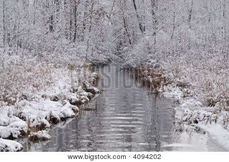 Winter Tamarack Creek