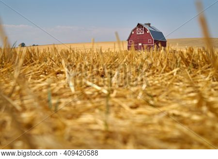 Wheat Stubble And Red Barn. A Faded, Red Barn On A Hill In The Palouse. Washington State, Usa.